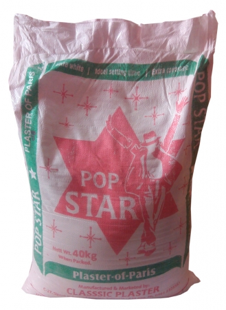 Plaster Of Paris Pop Star